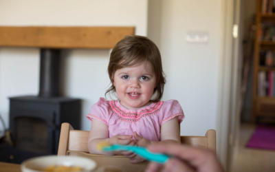 Avalon at 16 Months Old