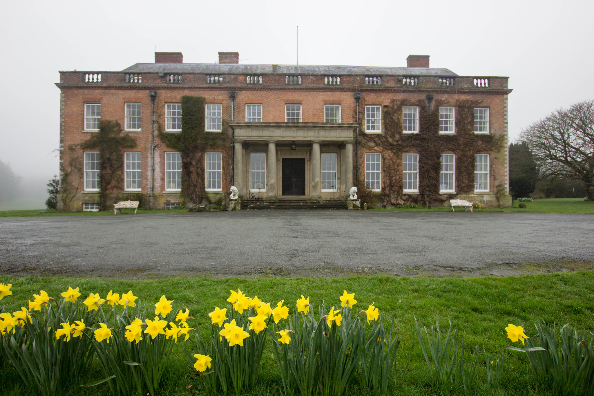 Walcot Hall Exterior with daffodils misty morning